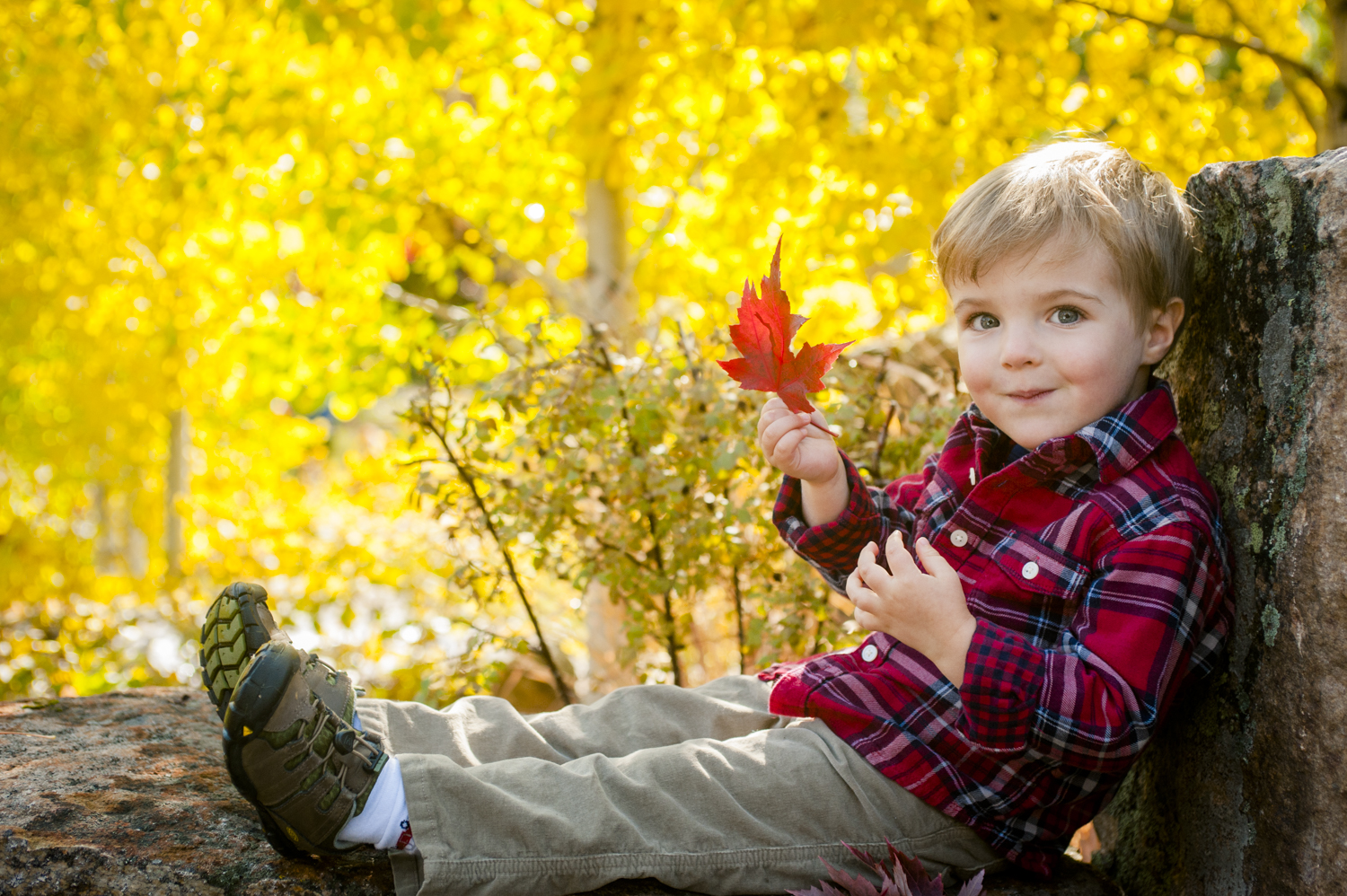 fall_lifestyle_family_leaves_candid_playing-021.jpg