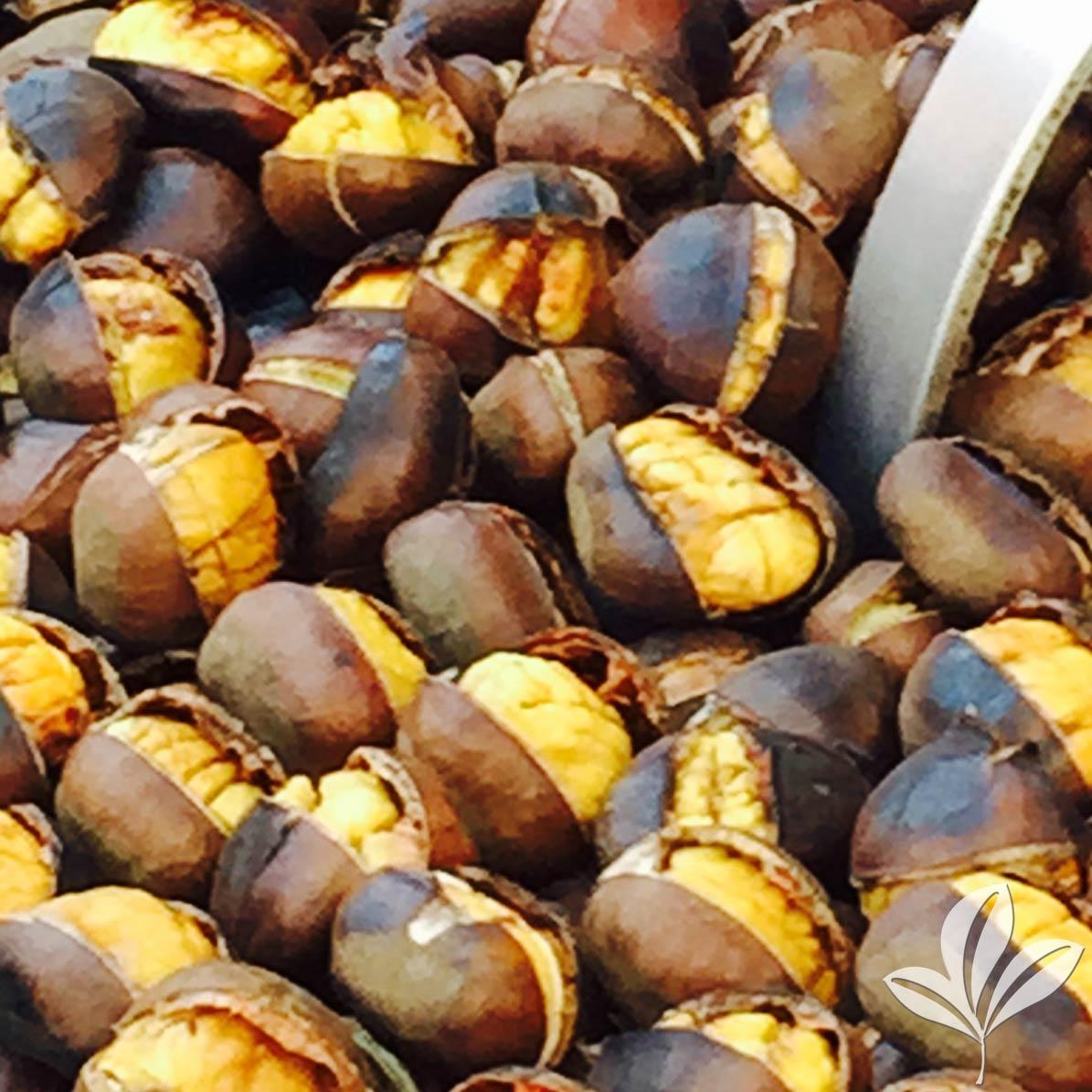 chestnut-cropped2.jpg