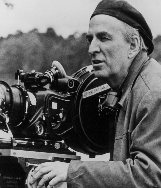 Bergman portada.png