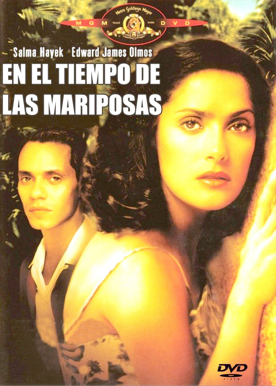 En El Tiempo De Las Mariposas.jpg