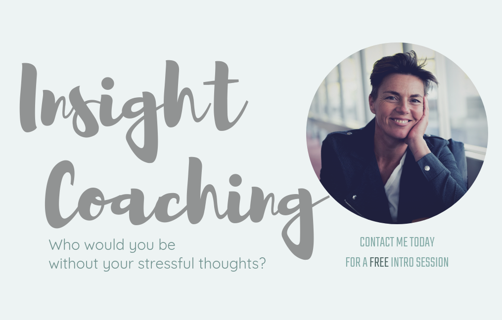 insight coaching with Maya Nova