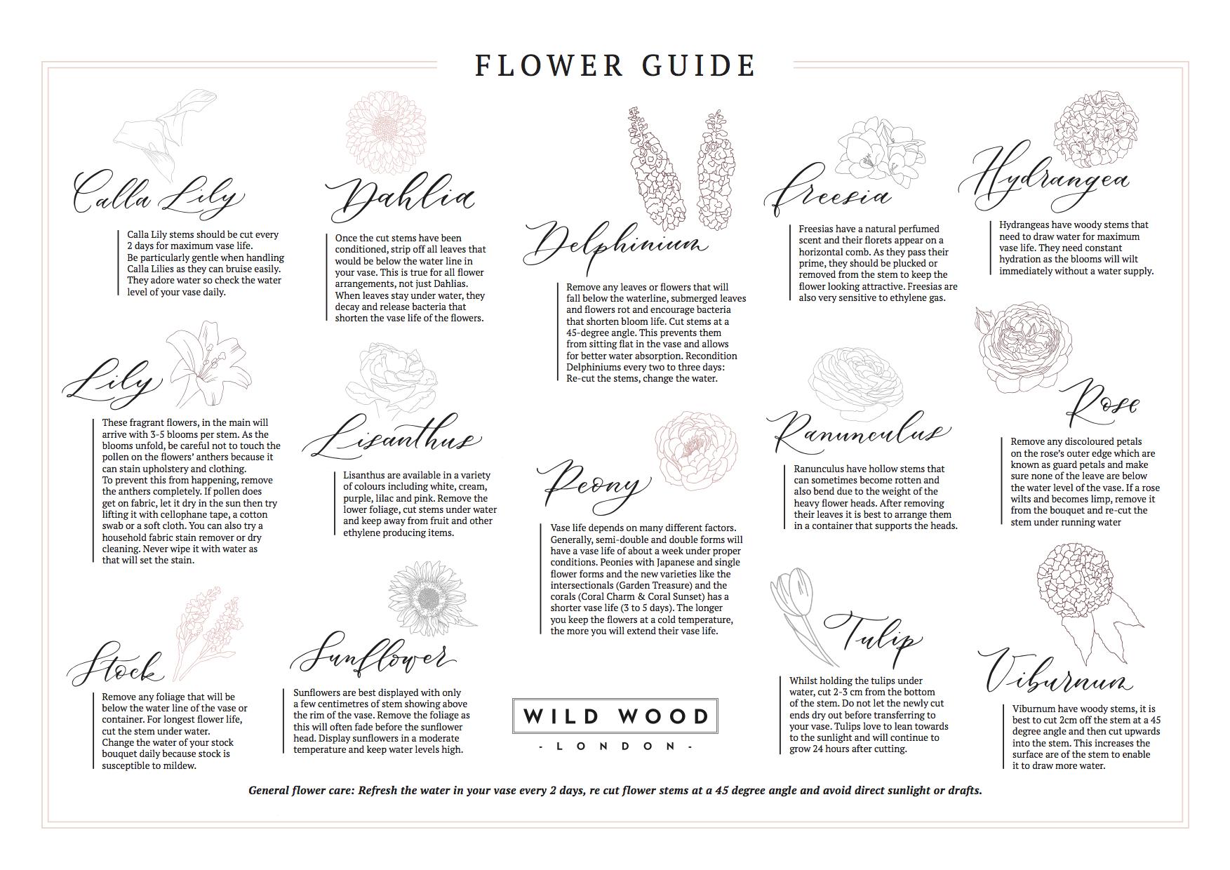 WW_FlowerGuide_A4_Landscape_Online.jpg