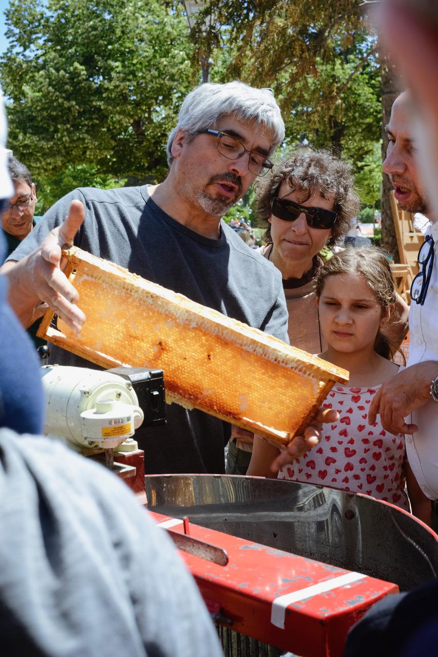 Demostración de la extracción de miel por Mel Vall de Ribes, BCN Honey Fest 2017, photo © Eva Barton