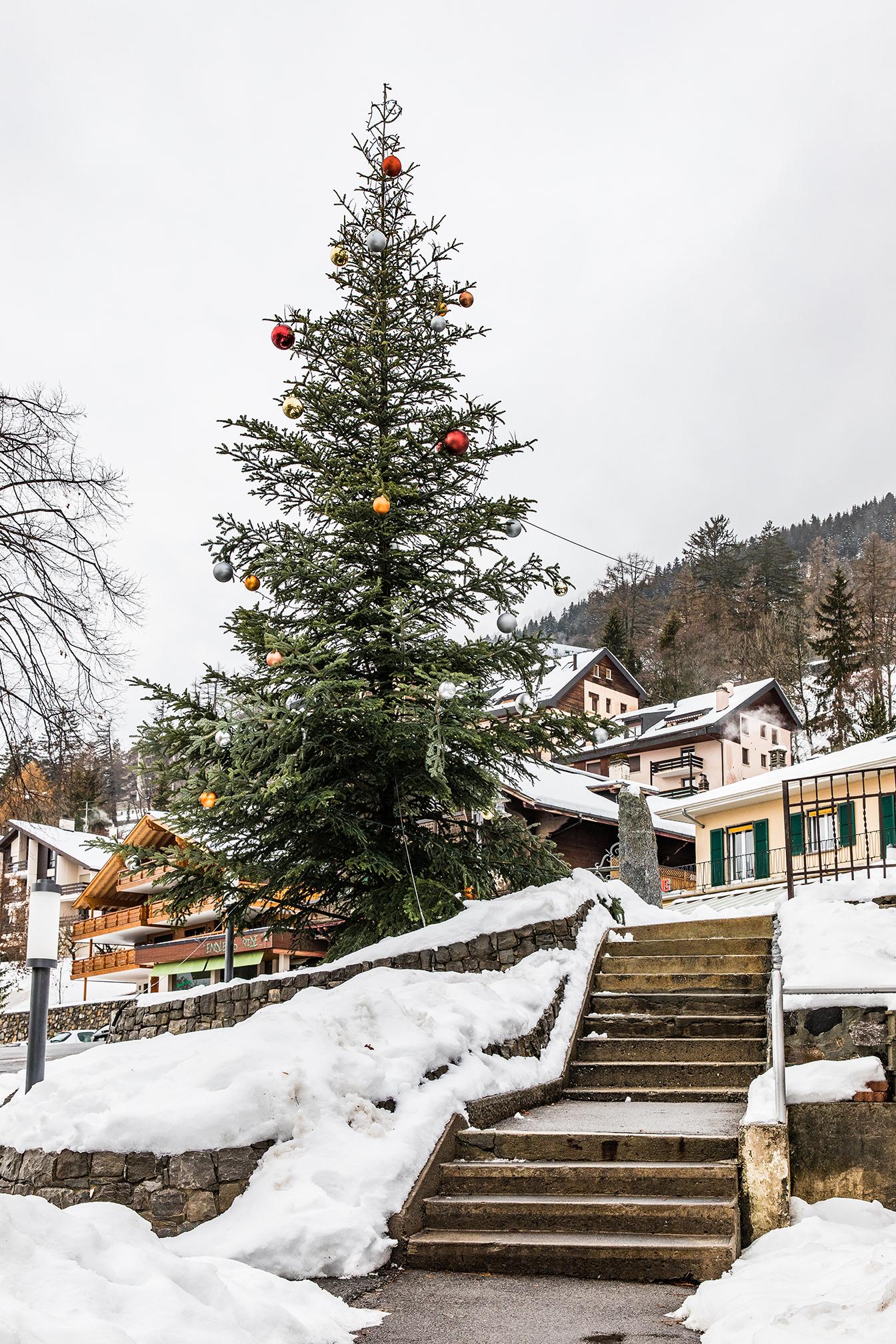 Swiss-161218-winterland-0014.jpg