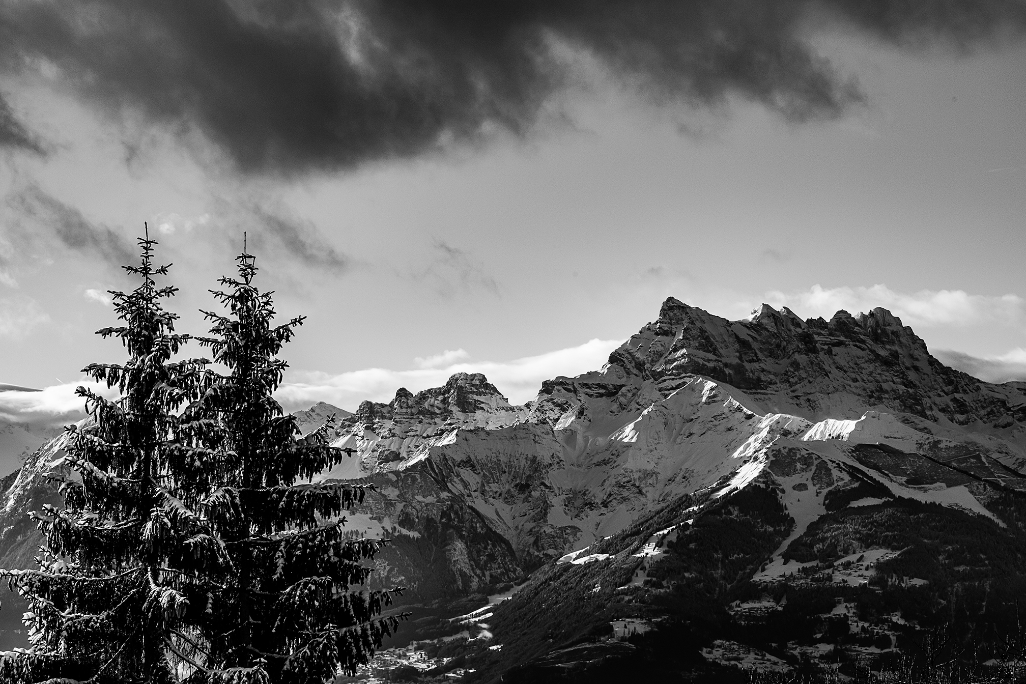 Swiss-201218-winterland-0350.jpg