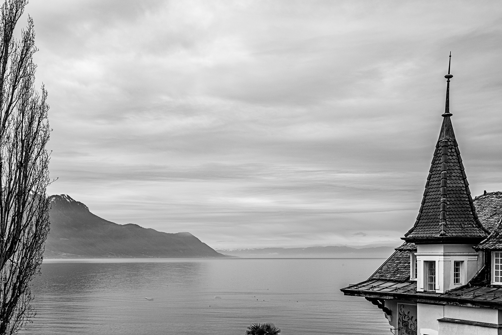 Swiss-231218-winterland-0889.jpg