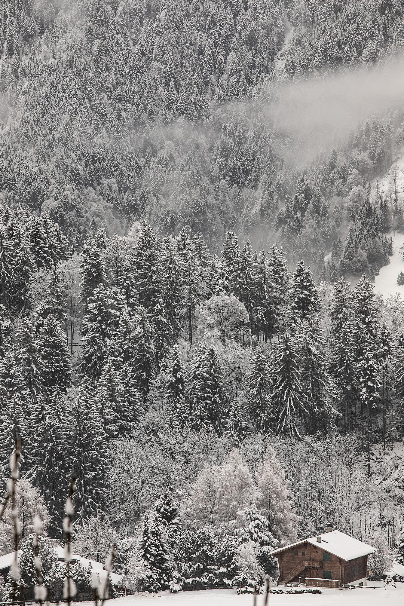 Swiss-171218-winterland-0226.jpg