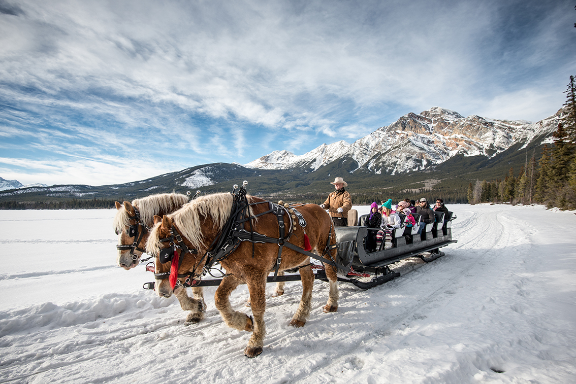 Take in the views from a horse-drawn sleigh