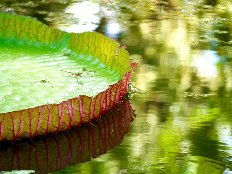 water-1250092_960_720 smaller.jpg