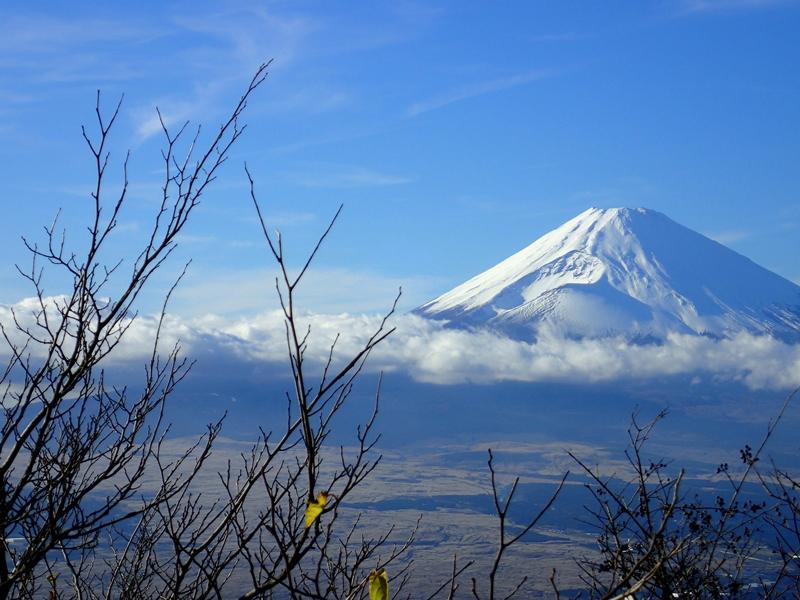 hakone-mt-fuji-2582263_1920.jpg