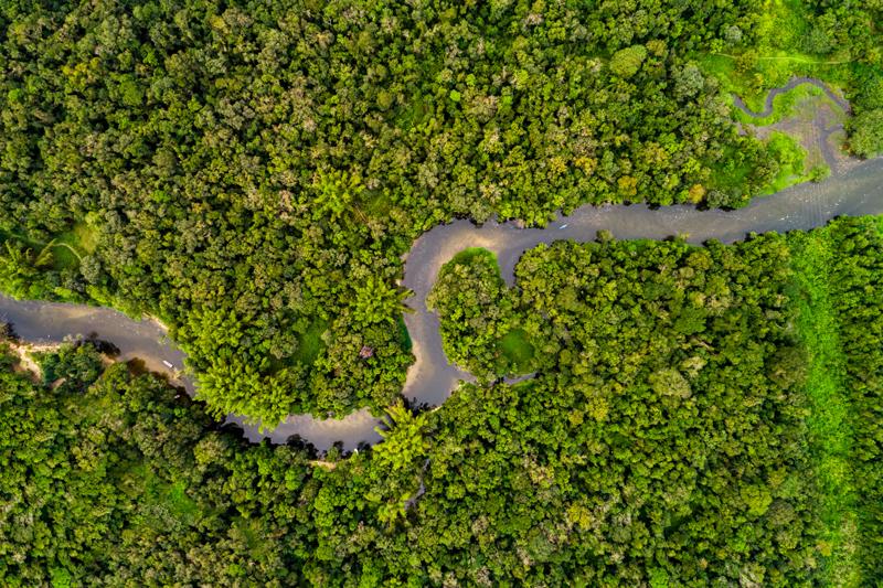 Peru-Amazon_AerialView.jpg