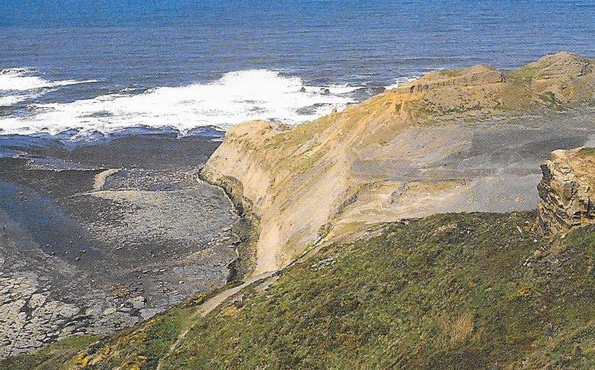 Cardon, D. (2007)  Alum mine, North Yorkshire.  Natural Dyes, 29.