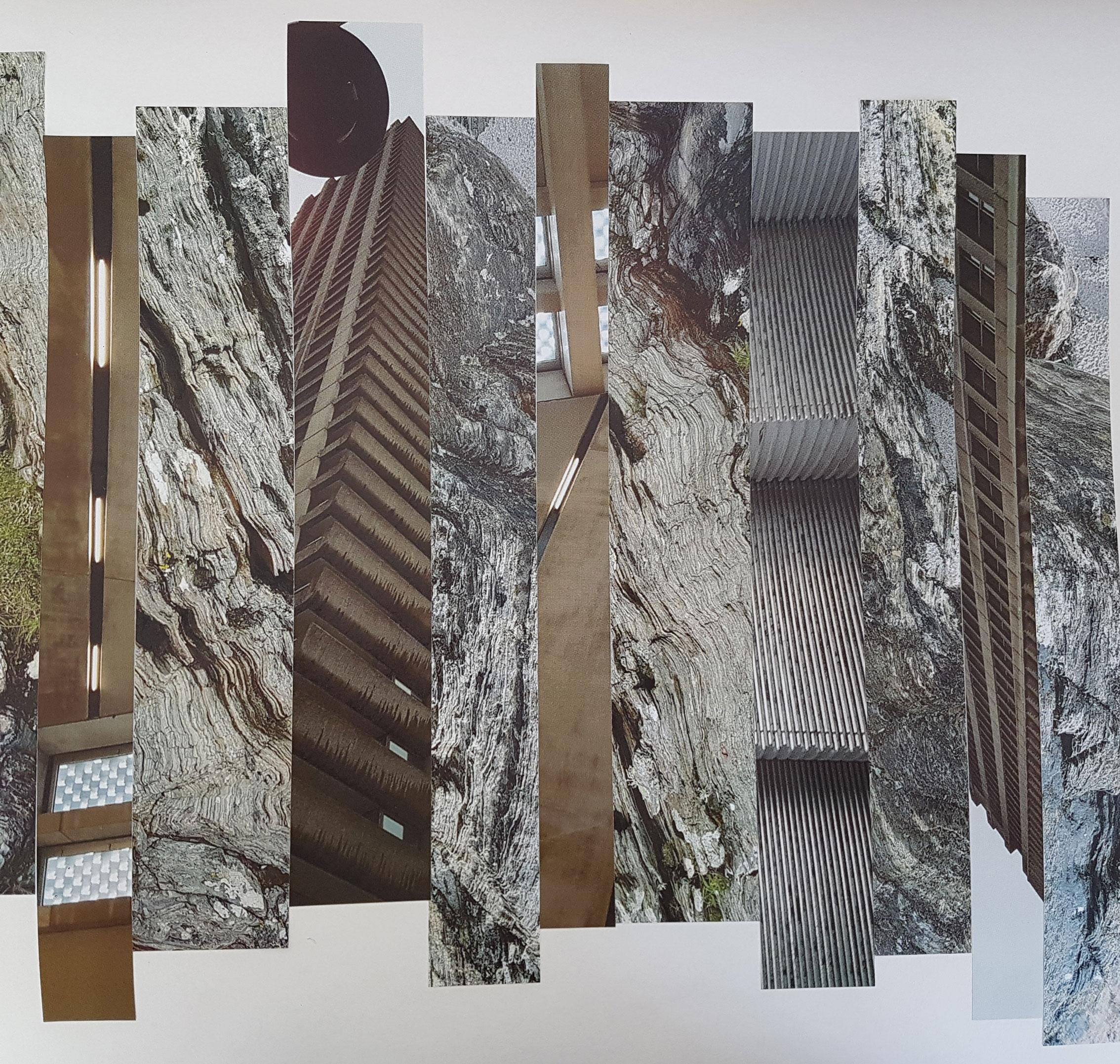 Burns, R. 2018. Collage 1. Photograph.