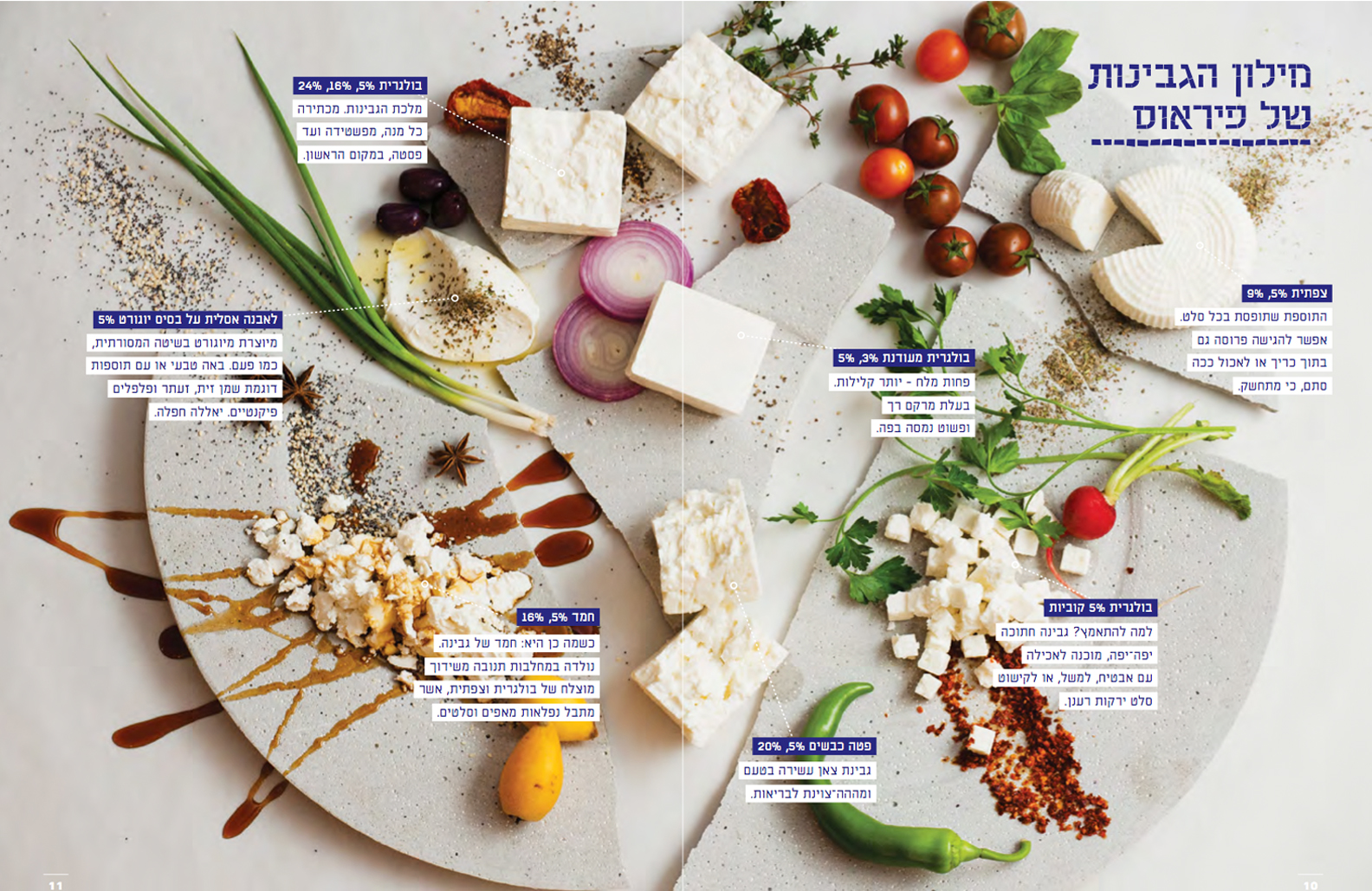 recipe developer - Dairy based recipes  A booklet created by LunchBox Publishing for Pireus