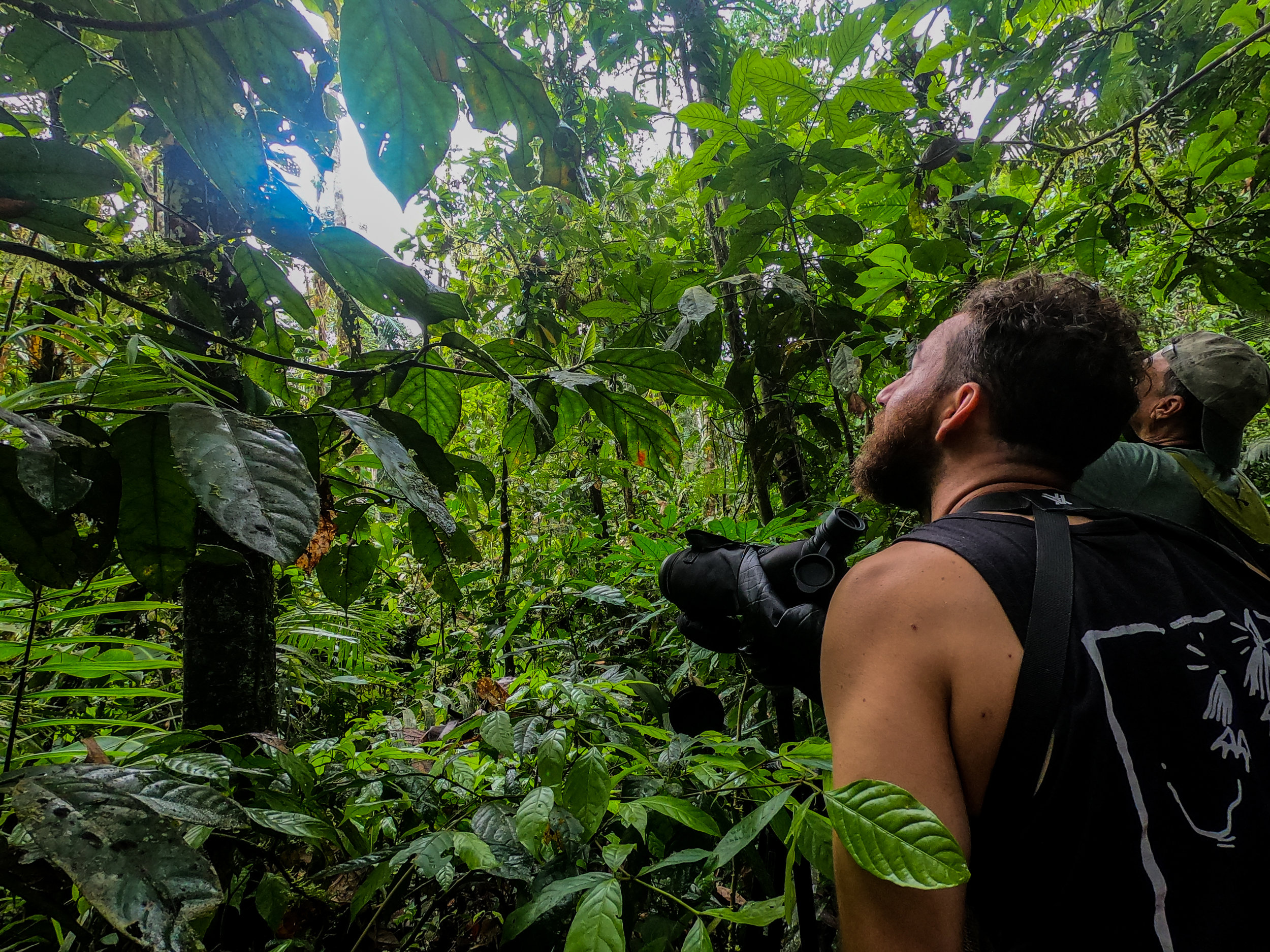 Ecuador Journey - Come on this 12-day adventure to different ecosystems of Ecuador, including the Amazon Rainforest. One in a lifetime experience with indigenous people learning about their culture, way of living, their deep connection and knowledge of nature.