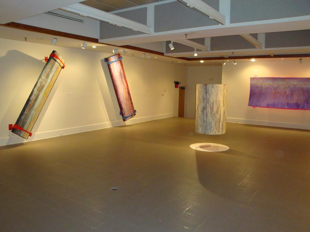 "Exhibition View"" Skin Series 2010"