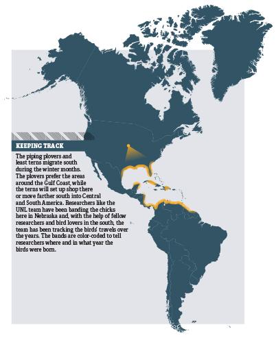 WEB_migrationmap.jpg