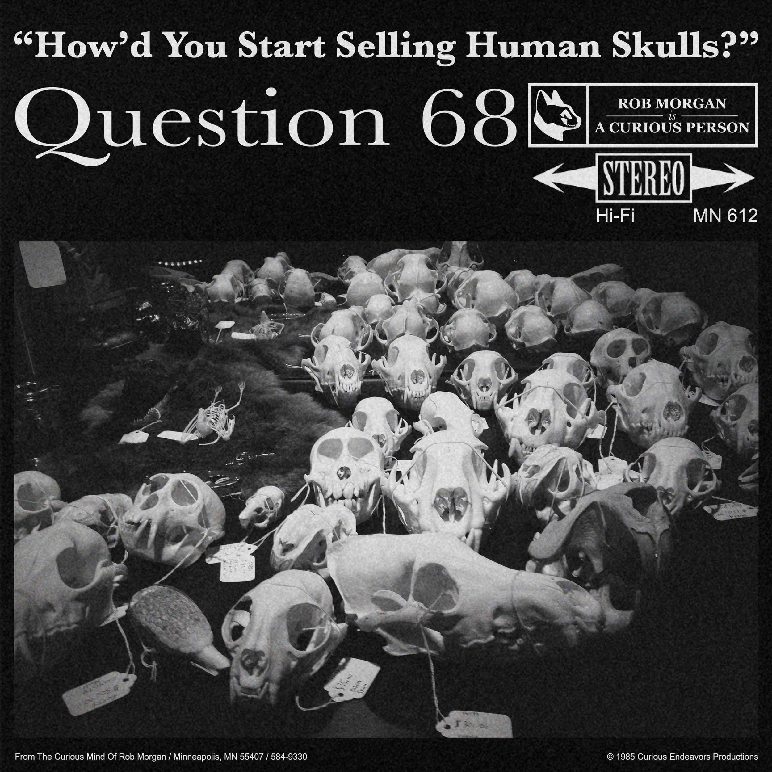 Q68 LP.jpg