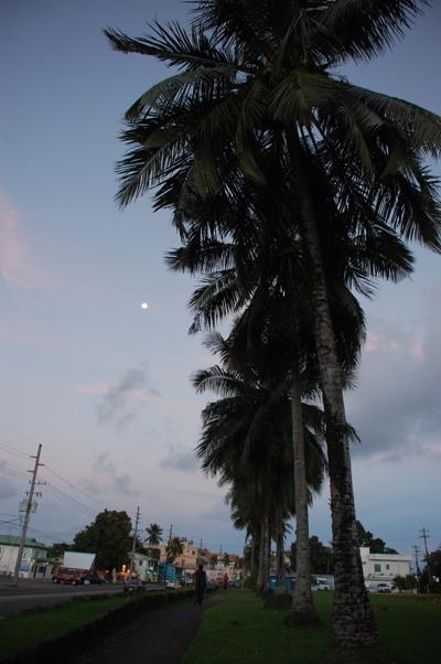 Koror By Moonlight