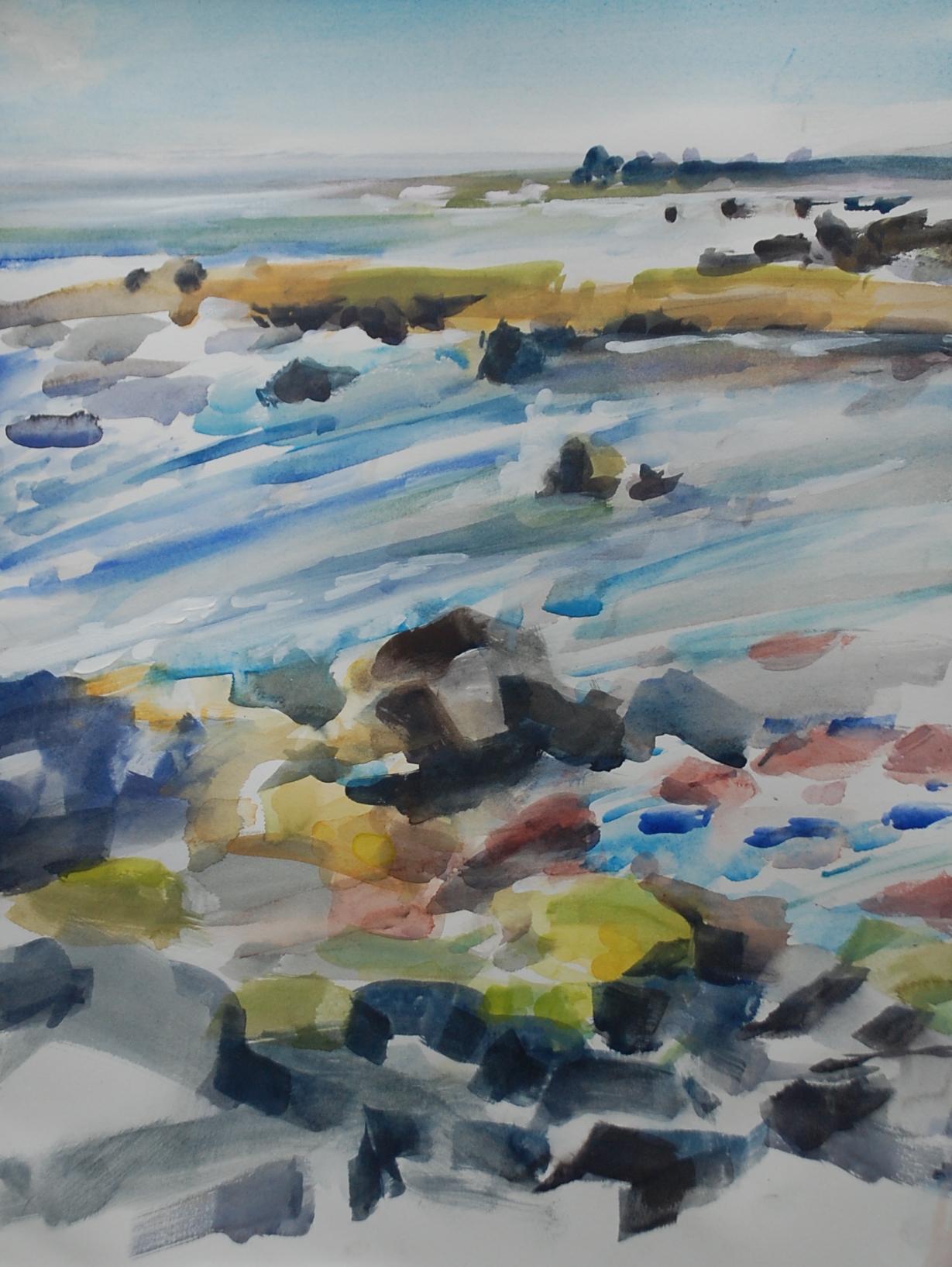 Too Windy to Snorkel, Pico Island, study