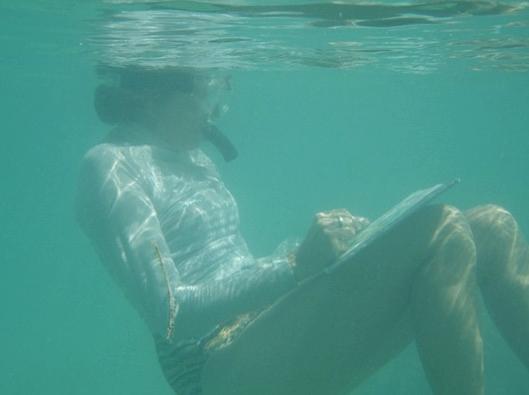 Painting Underwater Image copy.jpg