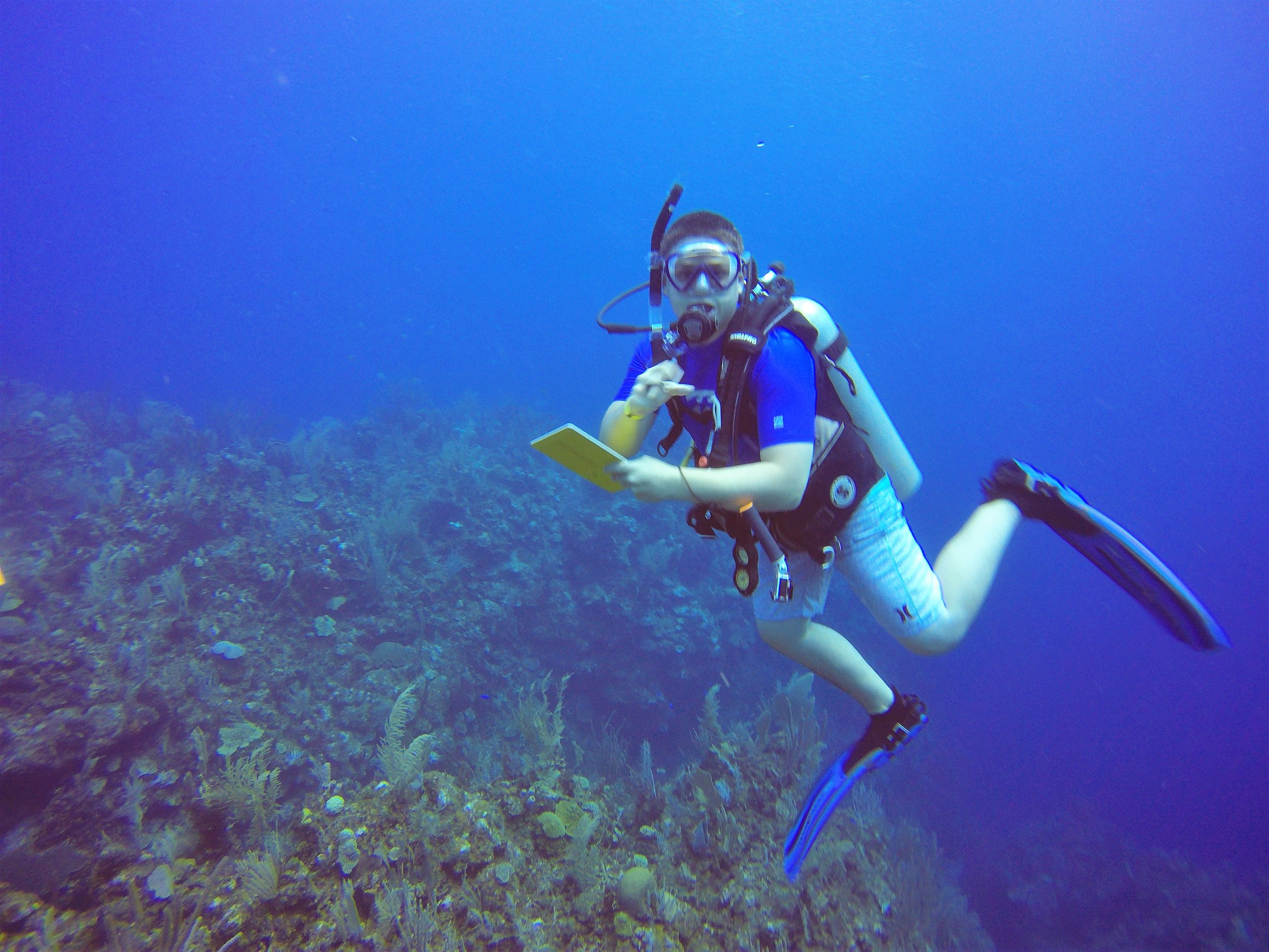 Citizen Science Fish Surveys - Students who register with Reef Environmental Education Foundation (REEF) have an opportunity to earn service hours by conducting fish surveys and uploading the surveys to REEF's citizen science database.