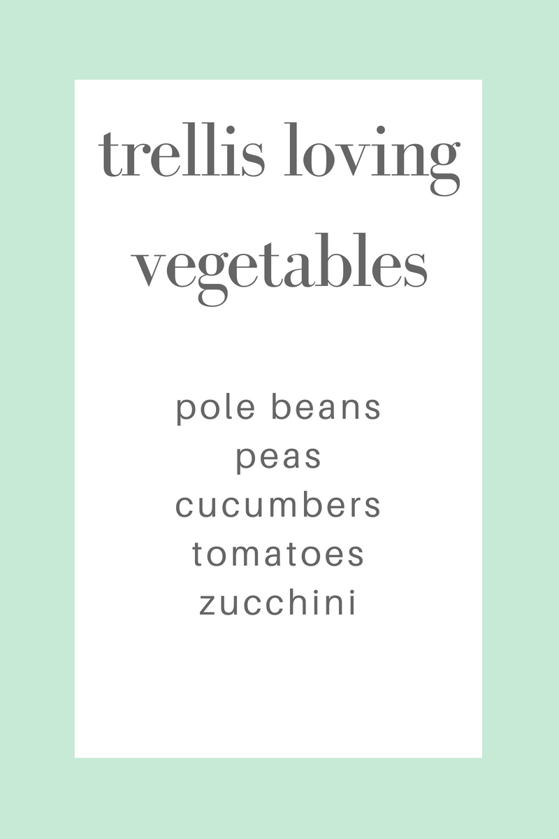 trellis loving vegetables.png