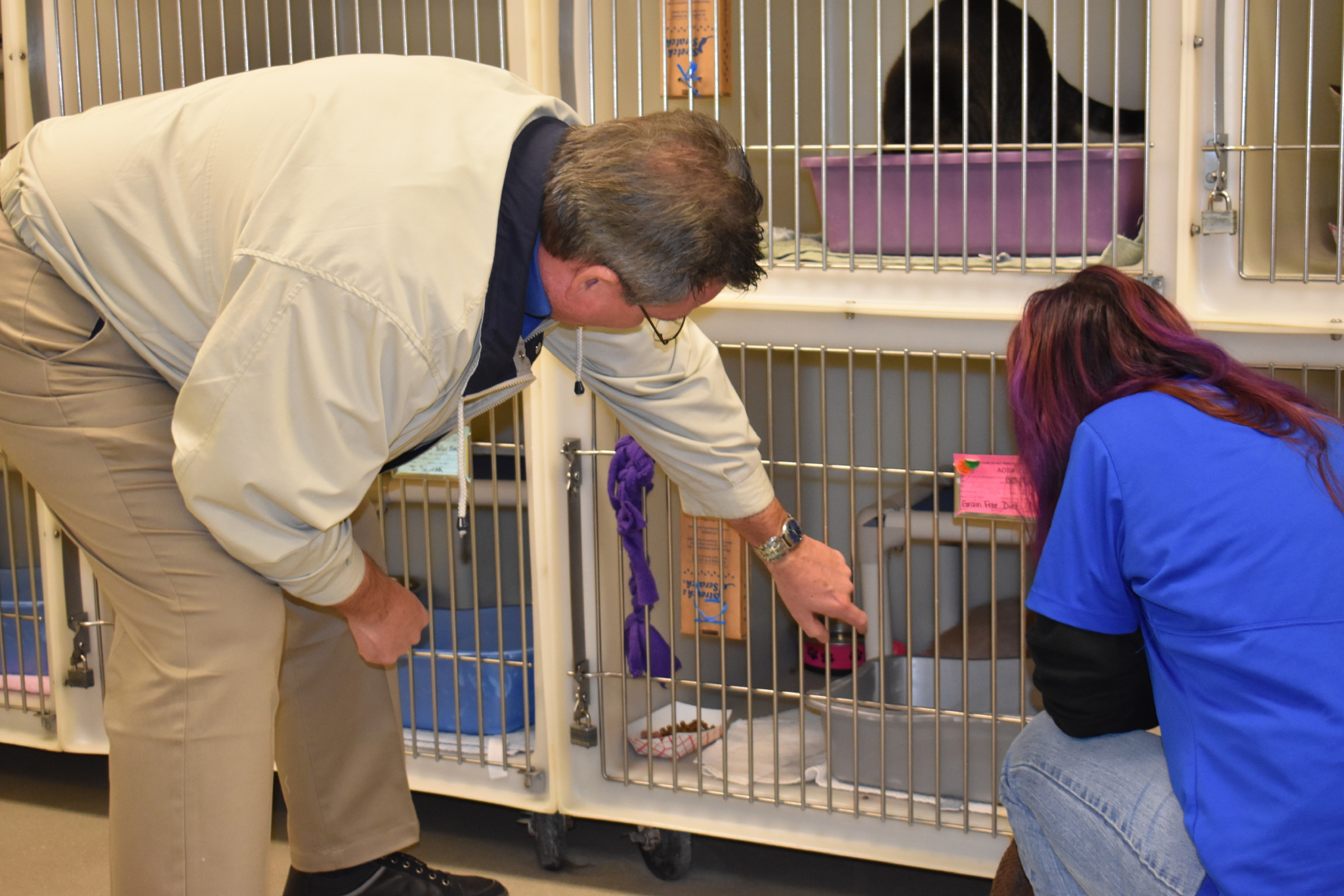 ANIMAL SHELTER 3.jpeg