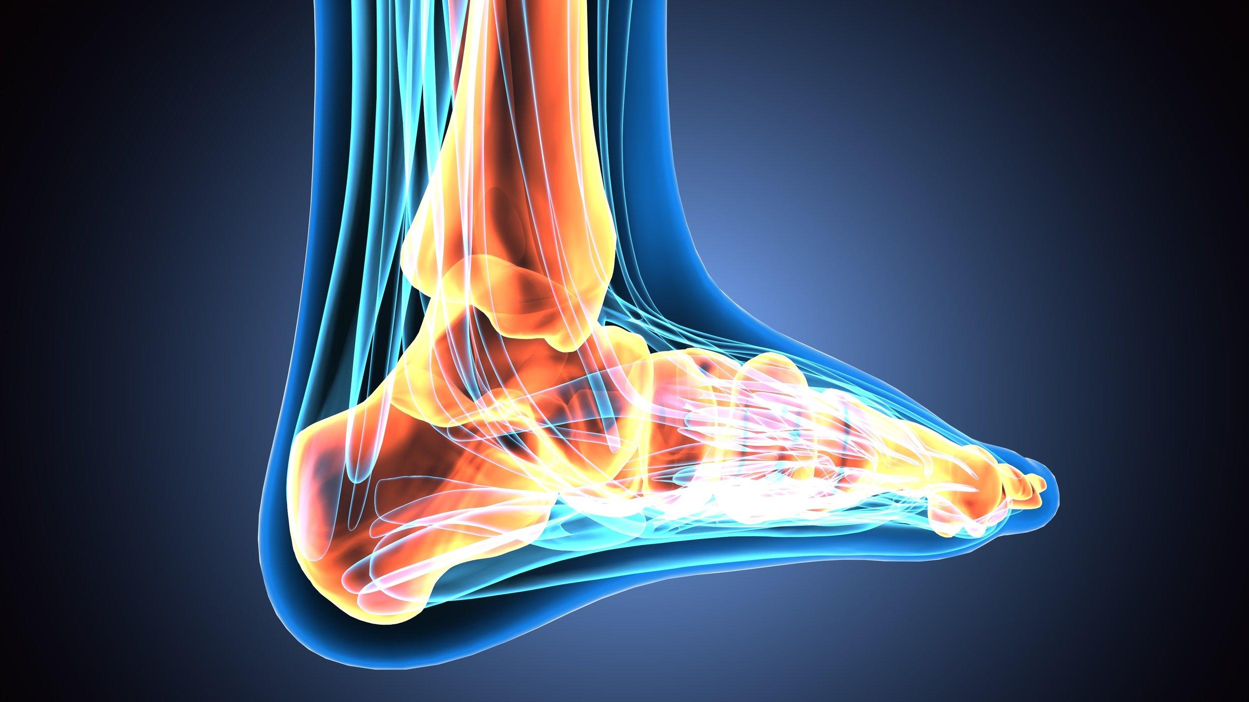 foot&anklesurgeon.jpeg