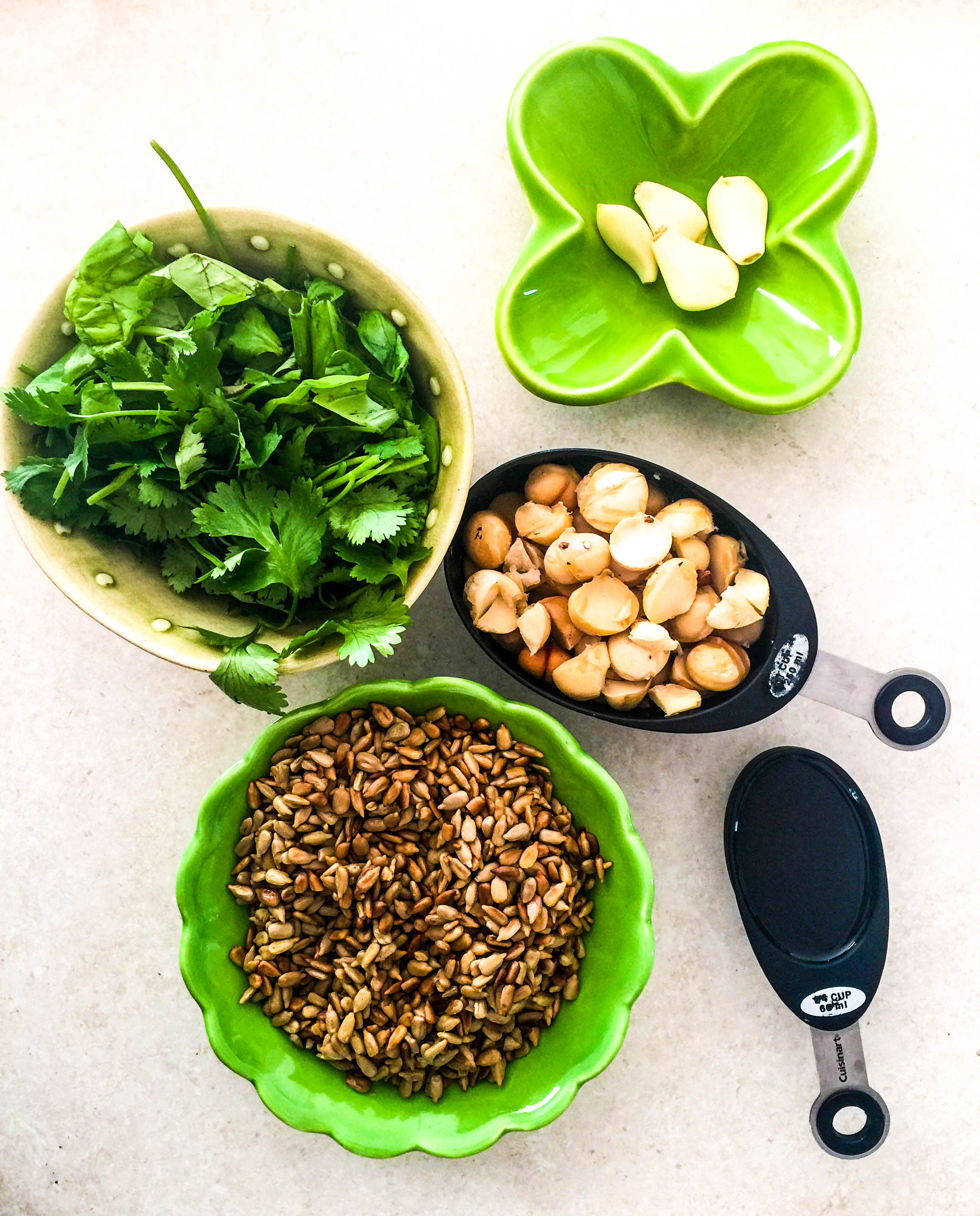 Pesto - 1. 1 cup of nuts (I used macadamia)2. 1 cup of basil3. 1/2 cup of coriander4. 1 cup of sunflower seeds (browned in a pan)5. 1/2 cup of olive oil (more or less depending on your preferred consistency).Throw all the ingredients into the blender and blend until it looks and tastes how you like it. Add salt and pepper for flavour.* Vegan, Gluten Free