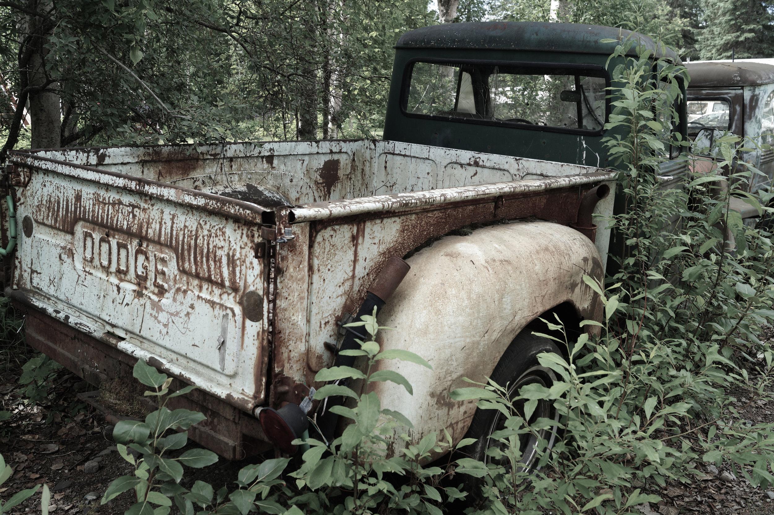 Forgotten Dodge Truck