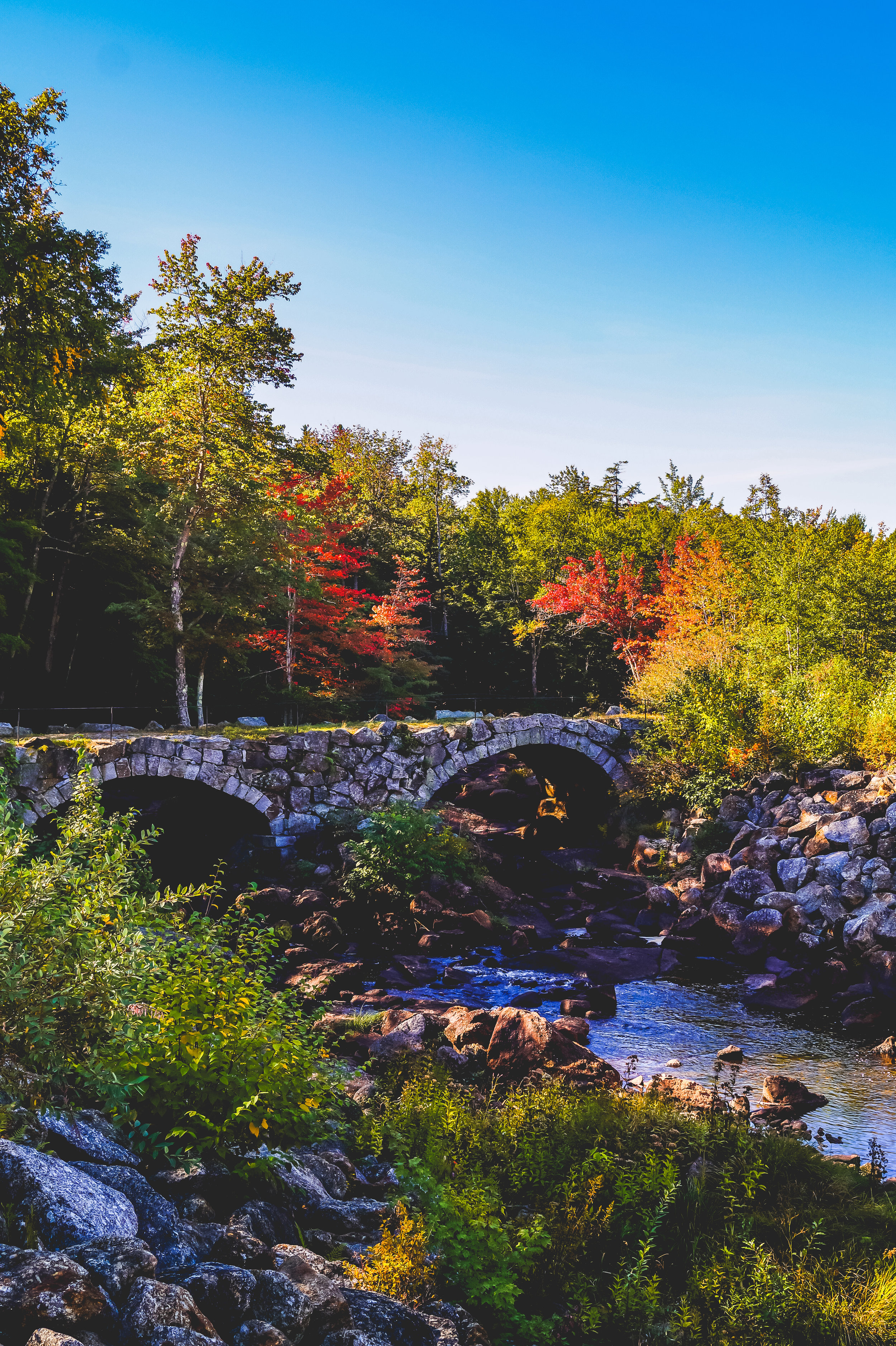 New England Fall Day