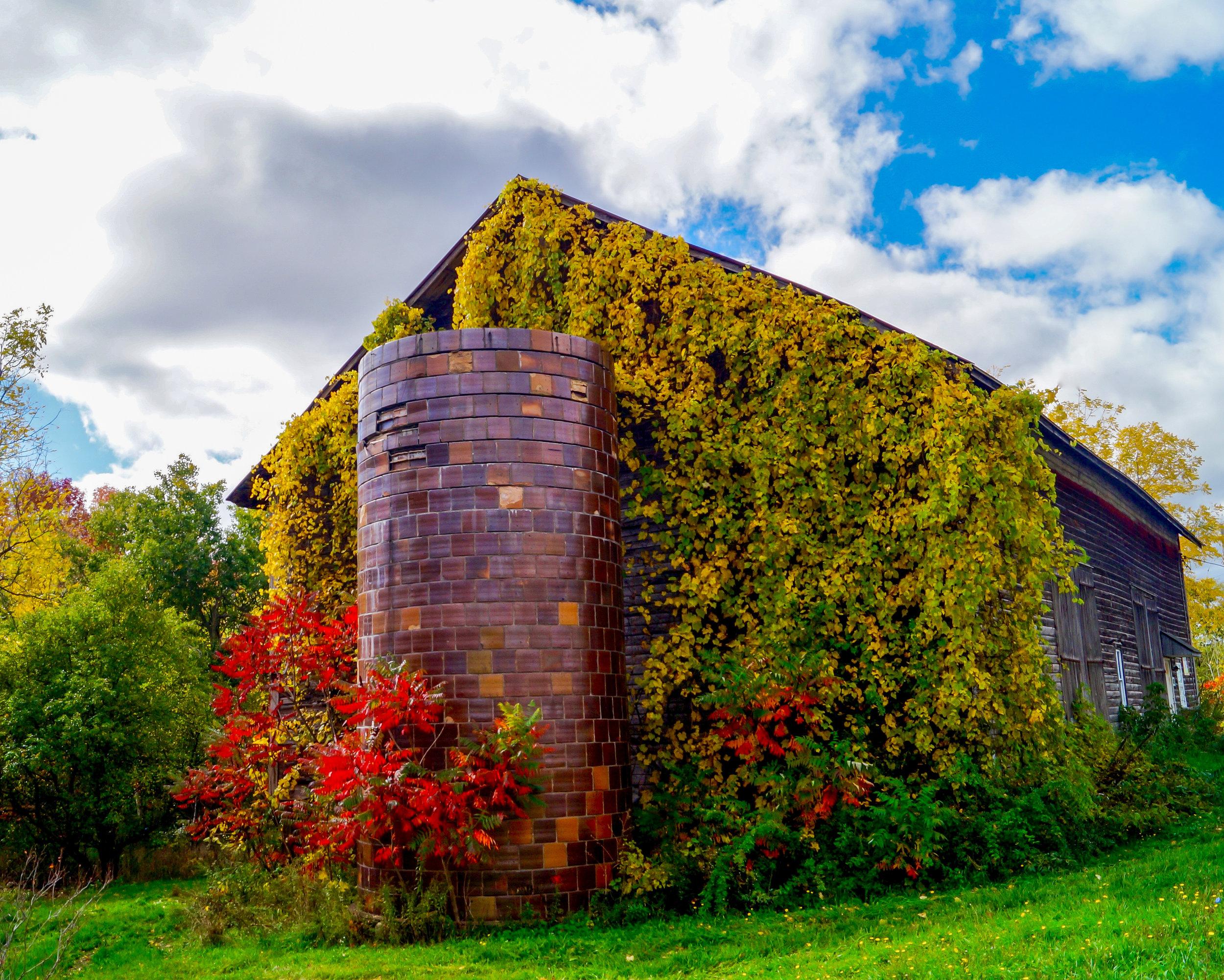 Fall Roadside Barn