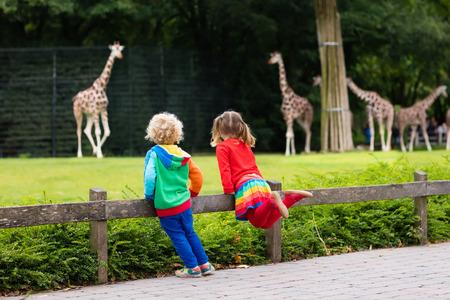 62373439_S_giraffe_zoo_children_girl_boy.jpg