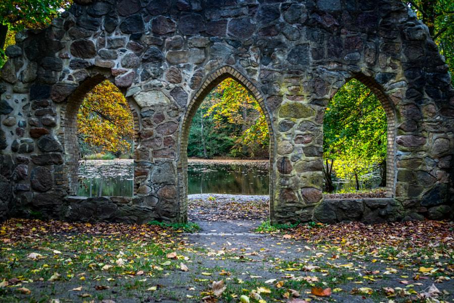 Three views of autumn