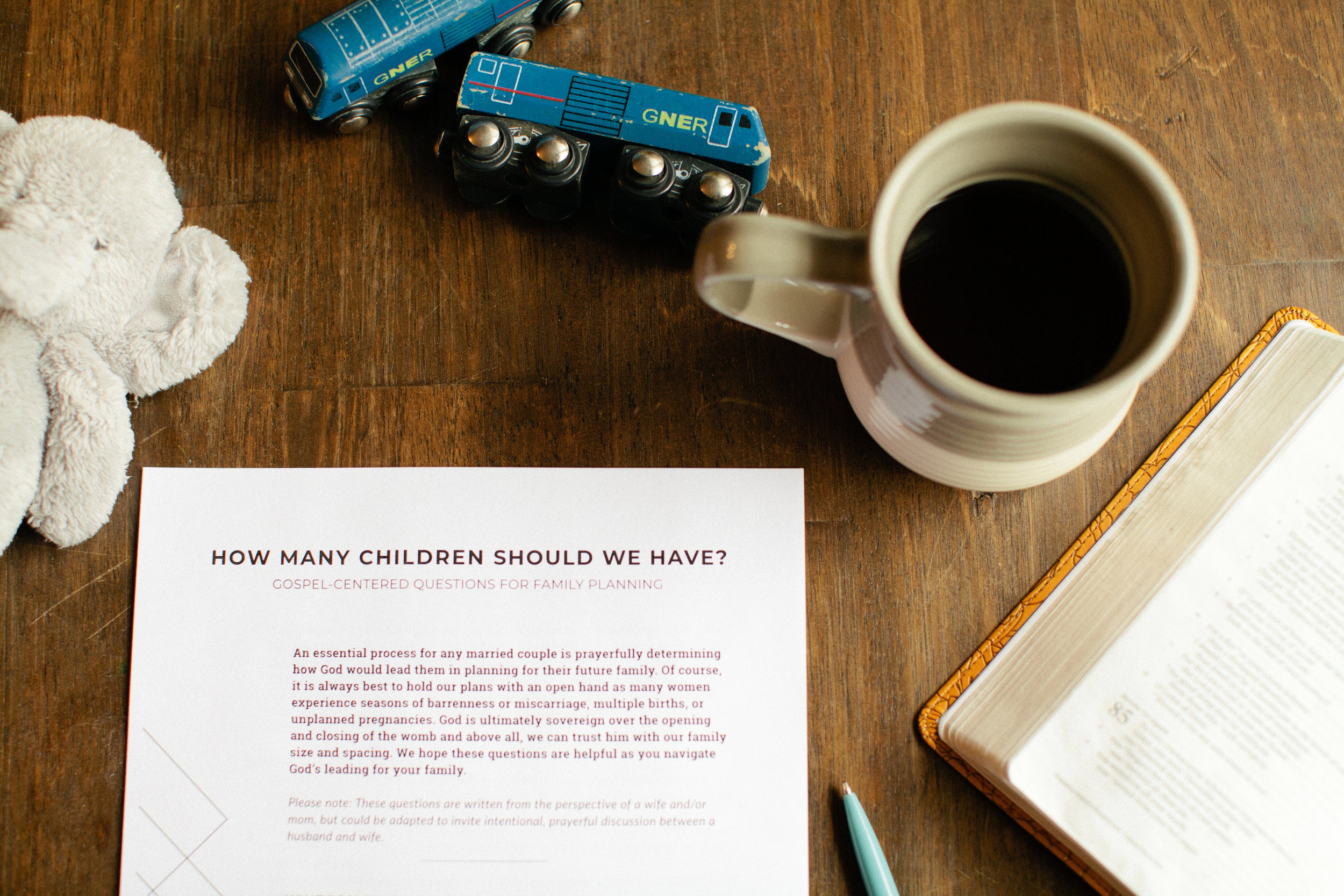 How Many Children Should We Have - Questionnaire