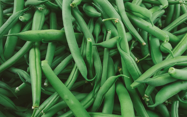 Foodshed Alliance Market Images.jpg