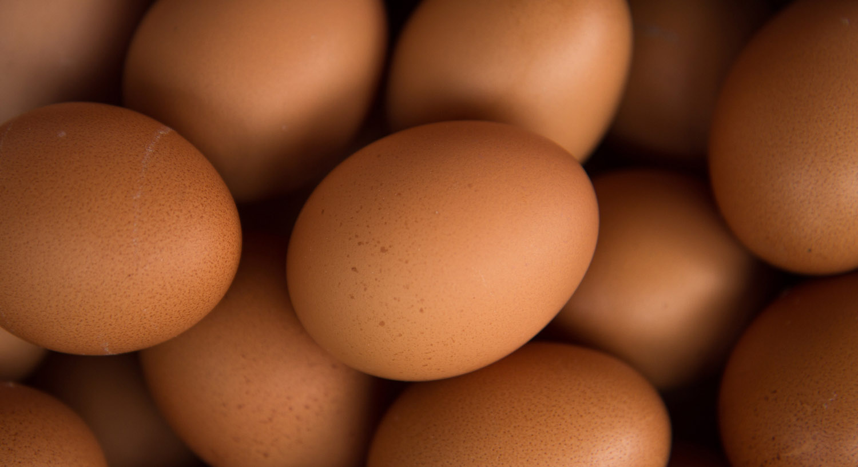 foodshed_alliance_good_eggs