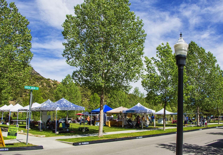 Buena Vista Market - South Main Town Square
