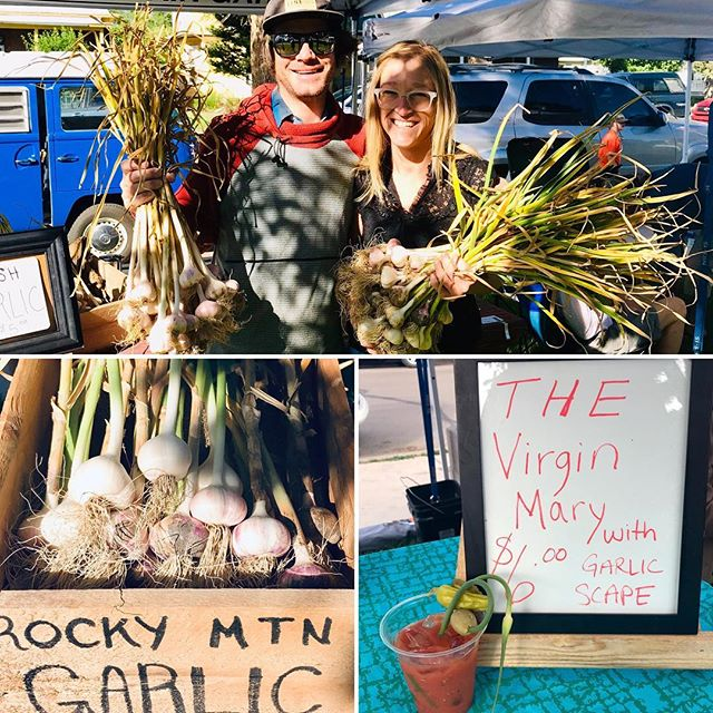 VENDOR SPOTLIGHT Rocky Mountain Garlic — gourmet, high desert, garlic grown from seed to storage in the Heart of the Rockies. Rocky Mountain Garlic follows organic and biodynamic processes, follows an earth-friendly approach, and farms on land that is free of chemicals and tended by hand, one clove at a time. Rocky Mountain Garlic provides fresh and local food, grown and made by people you can meet face-to-face. Each week at the market there is an ample amount of garlic for sale, as well as, rotating garlic products like hummus, pesto, or a Virgin Mary with garlic scapes! Get your #garlic every Saturday in at #foodshedalliance #farmersmarket , in #salidacolorado June through October!  www.rockymountaingarlic.net  #eatfresh #buylocal #salidastyle