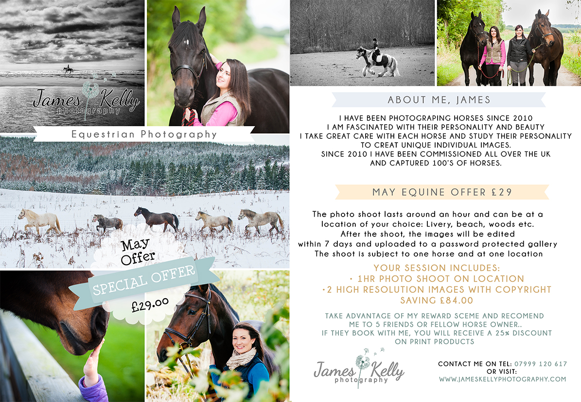 Equine-marketing-bored-May-Offer-low.jpg