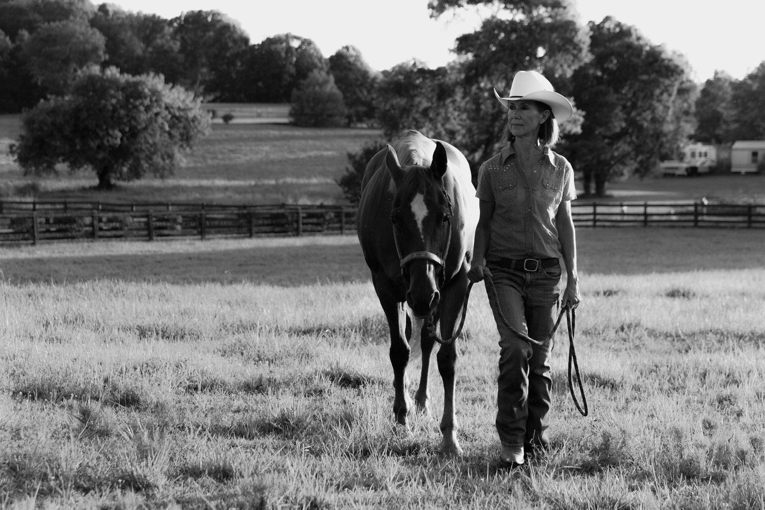 horse love Nashville