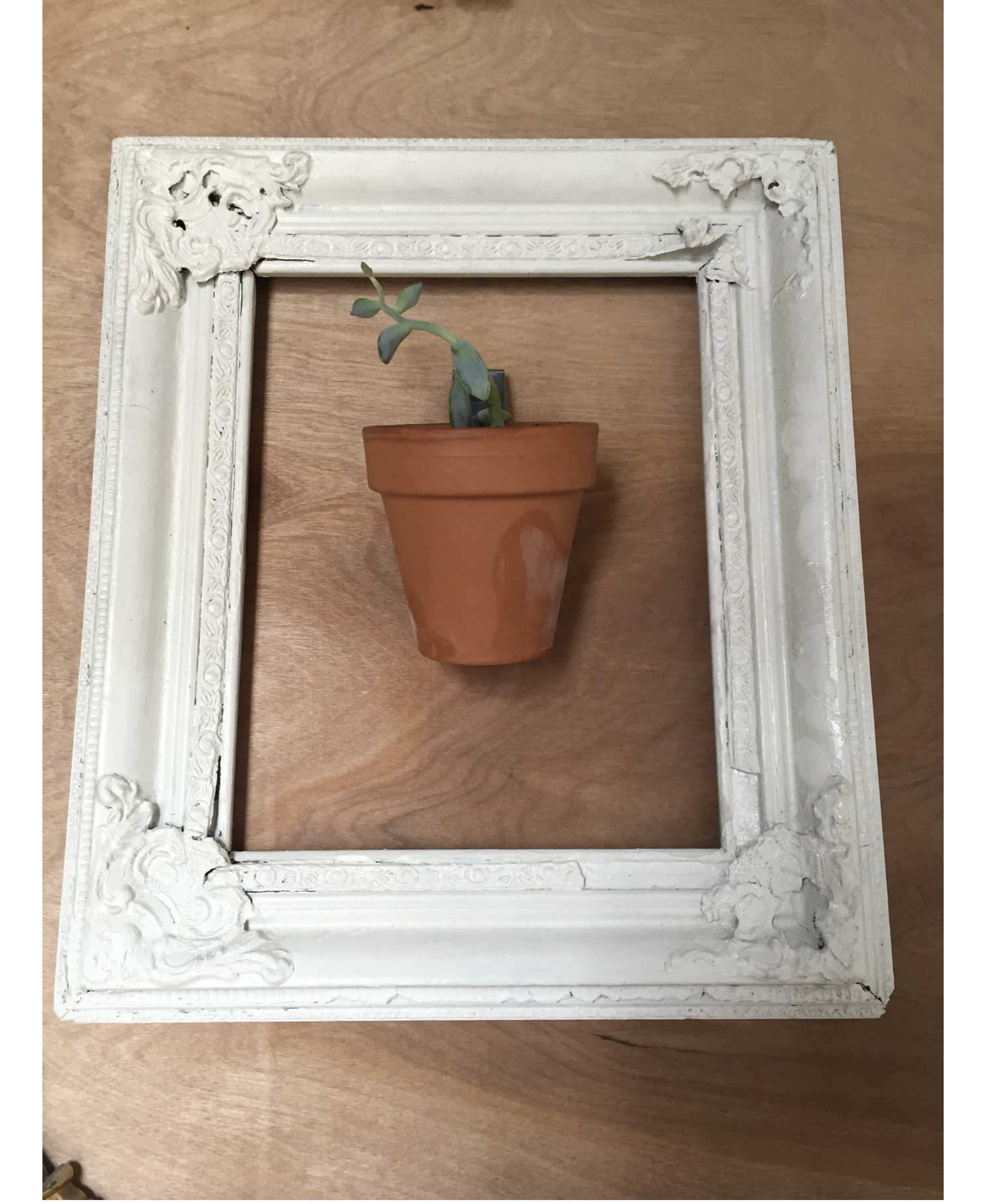 old white ornate frame