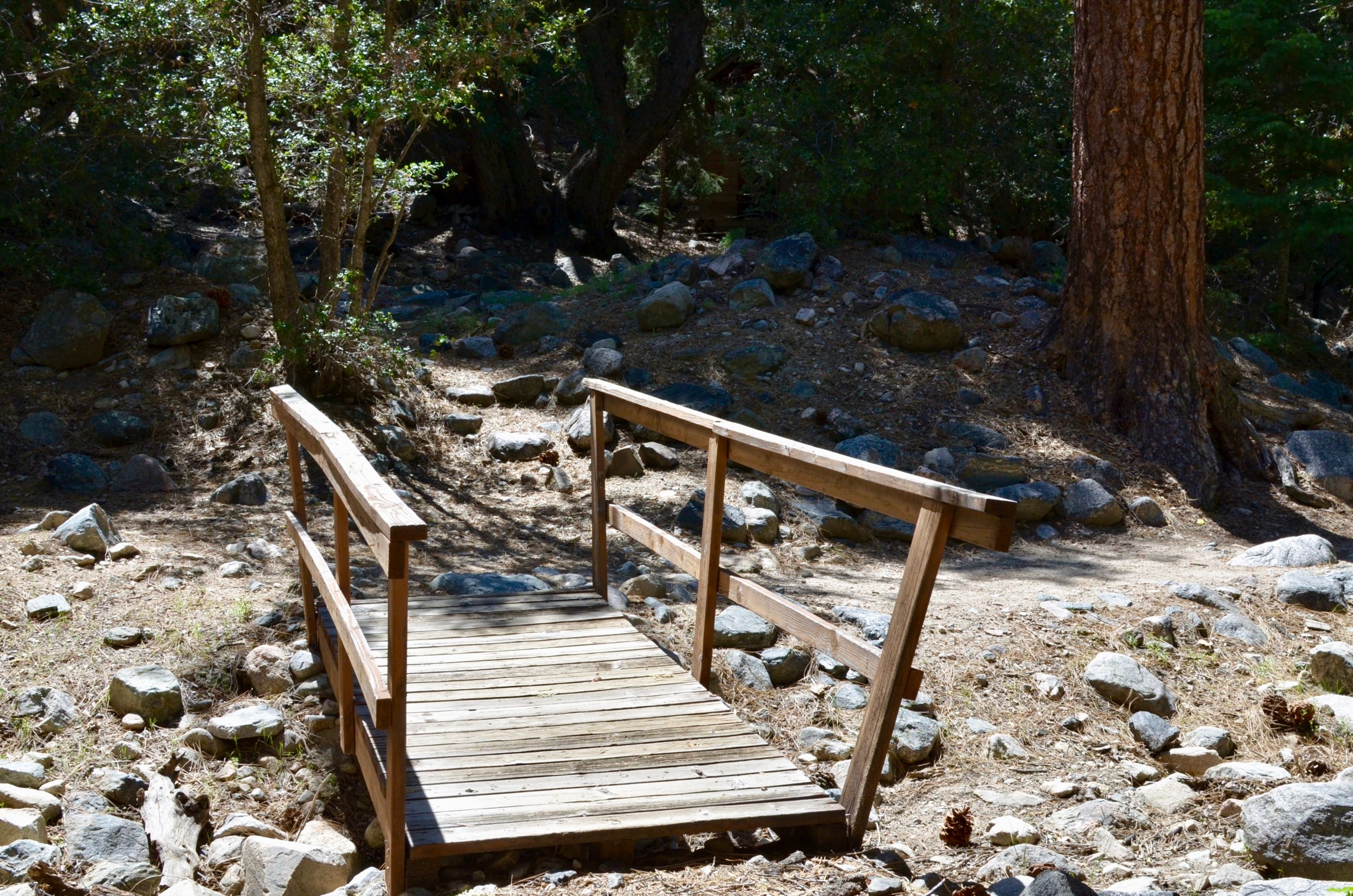 Multiple hiking trails