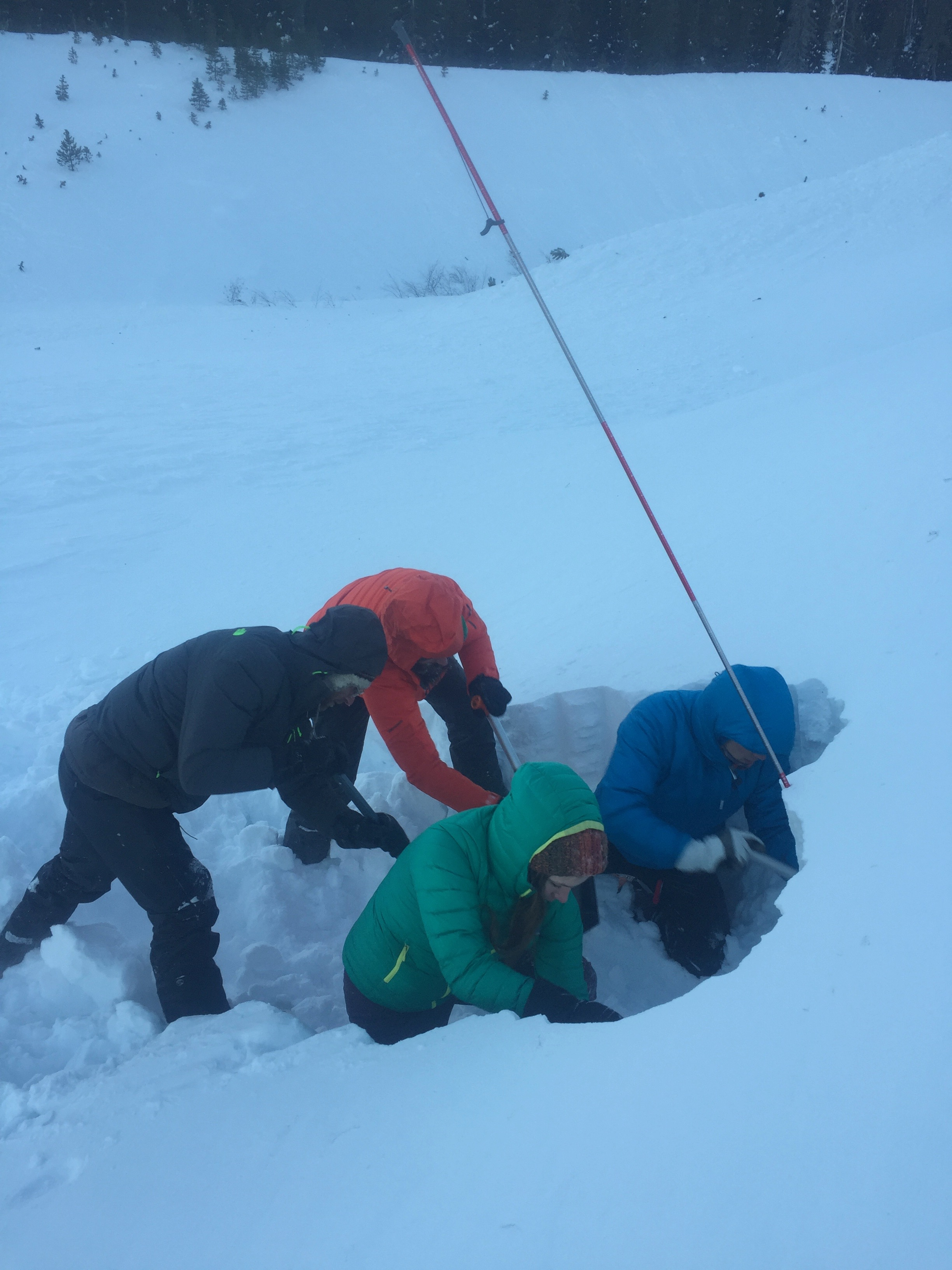 Students in an Oregon Ski Guides AIARE level one practice strategic shoveling.  Mt. Hood,OR.