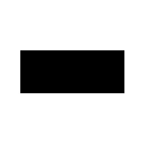 Levis Logo 500x500.png