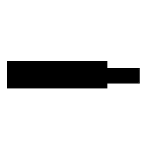 Lightspeed Logo 500x500.png