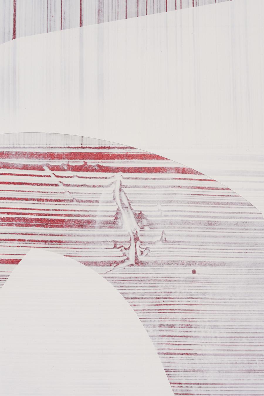 Salton Sea (shore), detail