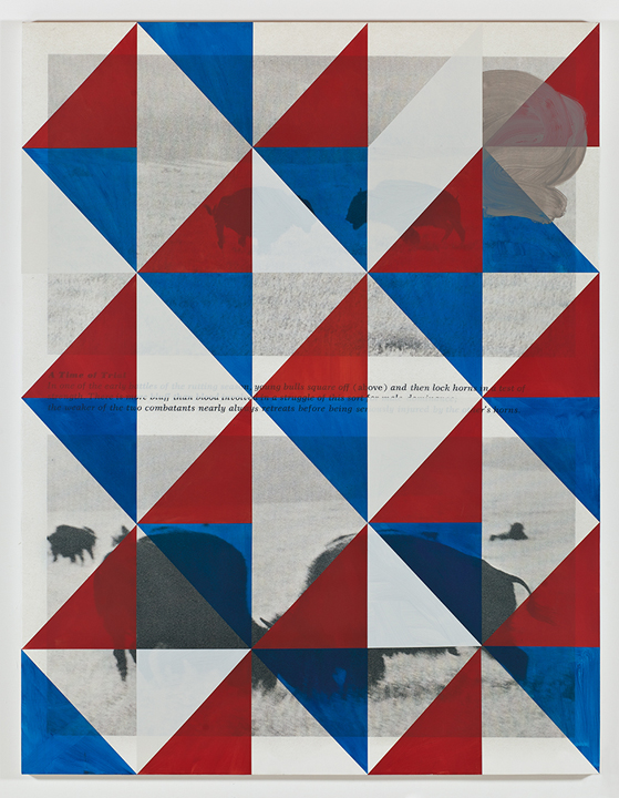 Screen (trial), 2011  Acrylic and UV cured print on canvas over panel  77 x 58 inches  195.58 x 147.32 cm