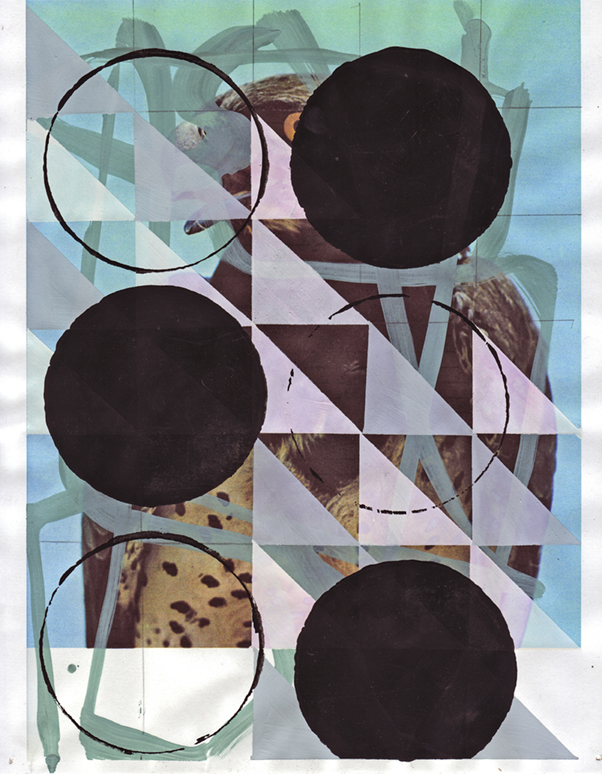 Martial Eagle 2, 2009  Gouache and pencil on archival inkjet print  11 x 8.5 inches  27.94 x 21.59 cm